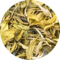 Darjeeling Organic White Tea, 9858